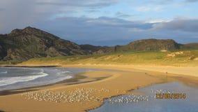 Lonely man. Kiloran beach Colonsay isle man Royalty Free Stock Photography