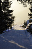 Lonely man on misty ski trail in winter. Royalty Free Stock Photo