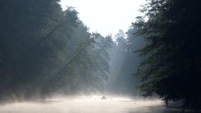 Lonely man with a paddle in the boat swimming on a calm river in dawn fog. The first rays of the morning sun make their. Way through the branches of trees stock footage