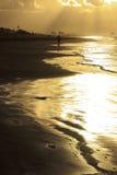 Lonely man walking ob beach Royalty Free Stock Image