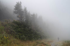 Single man walking on rock path immersed in mist and fog in the Stock Photo