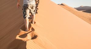 Lonely man walking on sand crest at Dune 45 in Sossusvlei desert Royalty Free Stock Photography