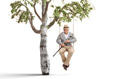 Lonely mature man on a swing hanging from a tree branch royalty free stock photography
