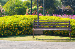 A Lonely metal Decorative bench in the flower garden. Lonely metal Decorative bench in the flower garden Stock Images