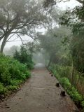 Lonely misty road. Rainy days in panchgani stock image