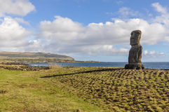 Lonely moai, Ahu Tahai, Easter Island, Chile Royalty Free Stock Images