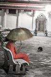Lonely monk with umbrella sitting on bench inside buddhist temple yard with black cat in the background stock photos