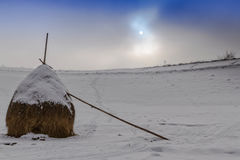 Lonely mop of hay covered with snow Stock Photo