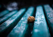Lonely nut Stock Photo