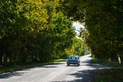 A lonely old car rides along the forest trail.  royalty free stock images