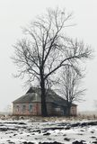 Lonely old house and tree. Lonely tree and old house without habits in the winter field in Ukraine. foggy day. diffuse light. snow on the ground stock photos