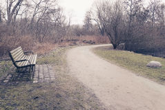 Lonely old wooden bench in a park Royalty Free Stock Image