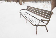 Lonely old wooden bench Stock Image