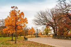 Lonely Park In Autumn. This is part of the Minnehaha Park in Minneapolis, Minnesota. This was taken during late autumn Royalty Free Stock Photos