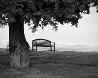 Lonely park bench in black and white Royalty Free Stock Photo