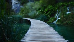 Lonely path at dawn at Plitvice Nationalpark in Croatia stock image