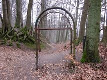 Lonely path in empty wood. Lonely path and iron gate in empty autumn wood leading to the unknown Stock Photo