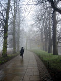 Lonely Pedestrian on a misty day. Cambridge royalty free stock photography