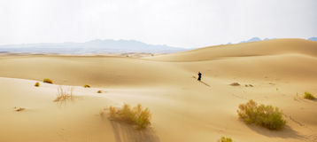 Lonely person in the desert Royalty Free Stock Photography