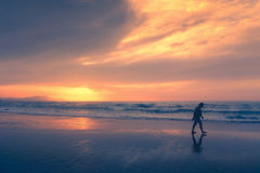 Lonely person walking on beach at sunset Royalty Free Stock Image