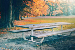 Lonely picnic place in autumn park Royalty Free Stock Photography