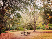 Lonely picnic table in beautiful garden Stock Images