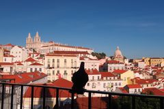A Lonely pigeon in Medival Lisbon Stock Photos