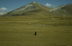 Lonely Pilgrim in Tibet Royalty Free Stock Photography