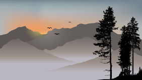 Lonely pine on the mountains background with flying birds. 2d vector illustration Royalty Free Stock Images