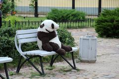 Lonely plush panda Royalty Free Stock Images