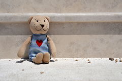 A lonely plush teddy bear Royalty Free Stock Image