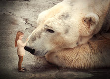 Lonely Polar Bear with Little Child Friend Stock Photography