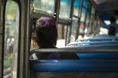 Lonely Public Bus Stock Photography
