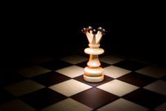 Lonely queen. Lonely a queen on a chess board. A dark art background Stock Images