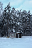 Lonely Ranch. Outside was cold -15degress in Latvia, Babite Royalty Free Stock Photo