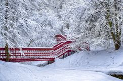 Lonely red bridge dramatic winter snow landscape forest snow on branches vignetting hdr photo