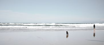 Lonely relaxing beach with dog and woman alone stock photo
