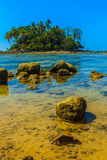 Lonely remote island with rock beach and tree when the sea water Stock Images