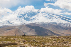 Lonely rider in mountain landscape Royalty Free Stock Photography