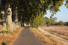 Lonely road. Along the Canal du Midi in southern France stock photography