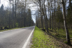 A lonely road. Stock Images