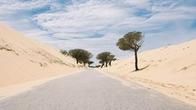 Lonely Road in Cadiz royalty free stock images