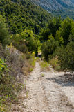 Lonely Road in Dalmatia Royalty Free Stock Photography