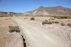 Lonely road in the desert Stock Image