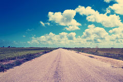 Lonely road in the Ebro Delta, in Catalonia, Spain, filtered Stock Images