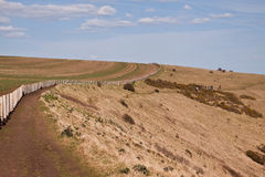Lonely road in the field Royalty Free Stock Photo