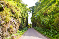 Lonely road through the green hills. A lonely road cutting through two high hills full of greenery Royalty Free Stock Photography