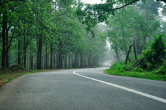 Lonely road Stock Images