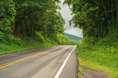 Lonely Road in the Mountains. A lonely road lined with green trees and a cloudy sky in the Shenandoah Valley. Taken in the summer royalty free stock images