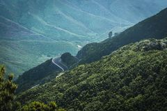 Lonely road in the mountain forest stock photos